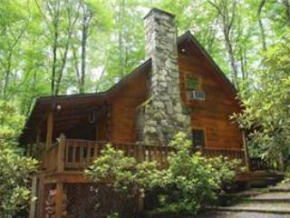 Creekside Bunkhouse - Image 1 - Whittier - rentals