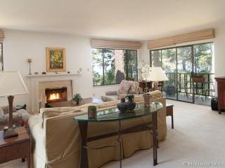 Ocean Pines #43 - Pebble Beach vacation rentals