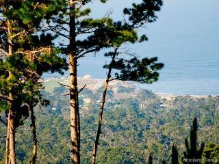 Ocean Pines #50 - Pebble Beach vacation rentals