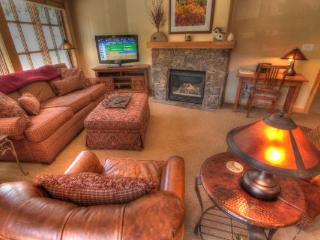 PP327 Passage Point 2BR 2BA - Center Village - Copper Mountain vacation rentals