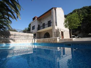 Perfect Dubrovnik Villa rental with A/C - Dubrovnik vacation rentals