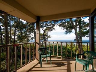 Ocean Pines #33 - Pebble Beach vacation rentals