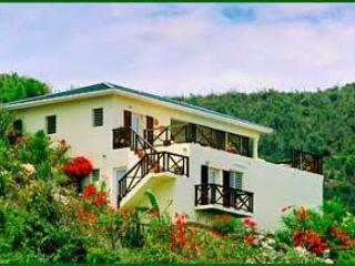 Moondance is a charming villa located on a hillside overlooking the sea. - Saint Martin-Sint Maarten vacation rentals