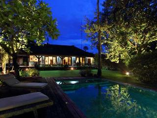 Cozy and Spacious Villa 5 mins from Seminyak - Seminyak vacation rentals