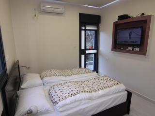 Ori's luxurious resort apartment - Jerusalem vacation rentals