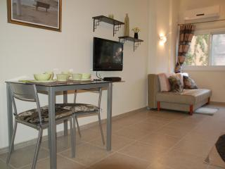 New AMAZING Big Studio on Wiesel near Dizengof - Tel Aviv vacation rentals