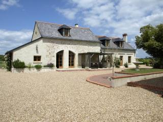 Charming B&B near Tours in Loire Valley - Cinq Mars la Pile vacation rentals
