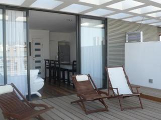 Unit C- Luxury Duplex Penthouse In Tel-Aviv - Tel Aviv vacation rentals