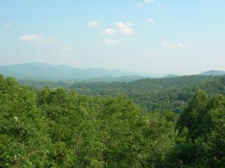 Perfect House with Deck and Internet Access - Franklin vacation rentals