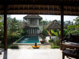 Ubud Bali Villa Damee 3 Bedroom Private Villa - Ubud vacation rentals