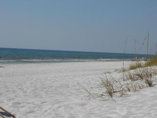 Views Views In Front of Beach See Dolphins&Sunsets - Seagrove Beach vacation rentals