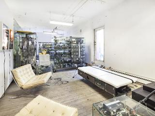 Gallery Loft - New York City vacation rentals