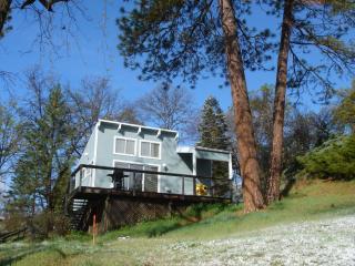 Sequoia Resort  'Artist's Studio' - House Two - Badger vacation rentals