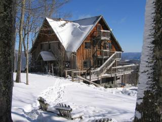 7 Bedroom Lodge-Spacious/Beautiful/No Neighbors - Fenwick vacation rentals