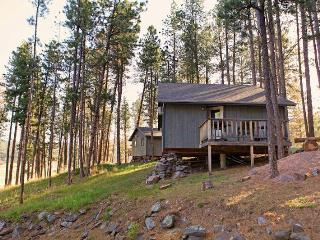 Affordable Cabin Nestled in Pines by Mt Rushmore - Black Hills and Badlands vacation rentals