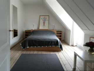 Down Town Copenhagen - Absolute Center - 298 - Denmark vacation rentals