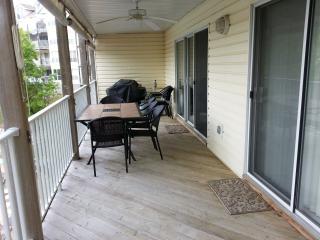 Spacious Ledges 3 BR Condo - No Steps !! - Osage Beach vacation rentals