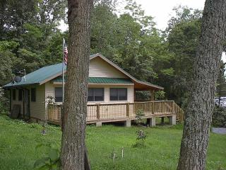 Located in Pisgah National Forest - Clyde vacation rentals