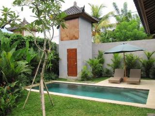 Villa Jepun - Peaceful 2bedroom AC Villa in Ubud - Ubud vacation rentals