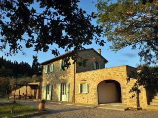 Villa Palazina - Amazing views of the Valdichian - Cortona vacation rentals