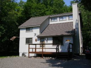 Paw Prints in the Poconos Booking for Summer A/C, WiFi, Sleeps 8 - Pocono Lake vacation rentals