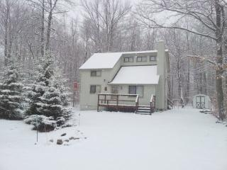 Charming 3 bedroom House in Pocono Lake with Deck - Pocono Lake vacation rentals