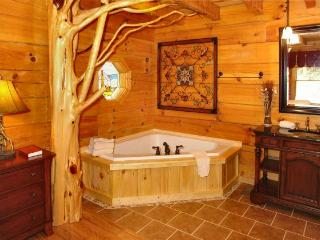 CUTE AND COZY Romantic Cabin in the Woods with Hot tub! - Sevierville vacation rentals