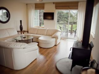Modern Duplex with Ocean View! - Yachats vacation rentals