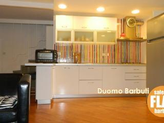 CR100Salerno - SALERNO FLAT Duomo Barbuti Apartment - Calvanico vacation rentals