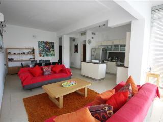 Fabulous 3 Bedroom Duplex Apartment in Tel Aviv - Tel Aviv vacation rentals