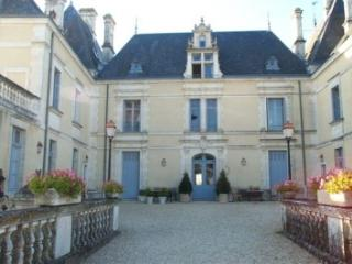 Chateau des Forges on wonderful golf resort - Vasles vacation rentals