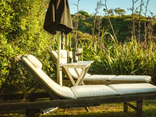Winemakers Loft  Luxury with sea+vineyard views - Waiheke Island vacation rentals