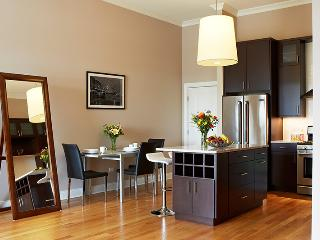 Save on Luxurious 2 Bd/2 Ba Condo - Chicago vacation rentals