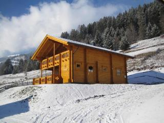 Luxury 3 Bed Private Chalet near ski area - Salzburg Land vacation rentals