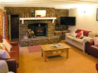 BLAEN Y CWM, large family house, three woodburners, enclosed garden, Ref. 20385 - Burry Port vacation rentals