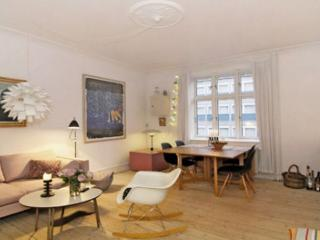 Lovely Copenhagen apartment near the waterfront - Copenhagen vacation rentals