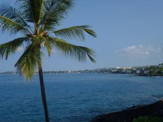 OCEANFRONT /  5 Star One of Best in the complex - Kailua-Kona vacation rentals