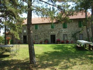 Fattoria di Arsicci, holiday house weekly rented. - Badia Tedalda vacation rentals