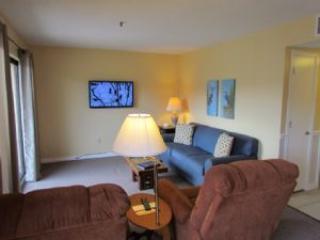 B0449 - Image 1 - Myrtle Beach - rentals