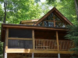 STICKS AND STONES - Sevierville vacation rentals