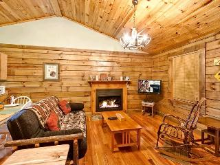 BEARADISE - Pigeon Forge vacation rentals