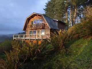 Amazing, dog-friendly cabin w/ exceptional ocean views & entertainment! - Neskowin vacation rentals