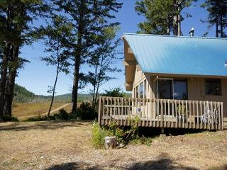 Peaceful & pet-friendly cabin with ocean views, sleeps 4! - Netarts vacation rentals