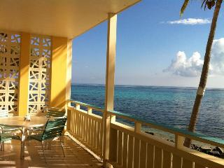 Stunning Sea- Breathtaking Views at Aqua Dream - Christiansted vacation rentals