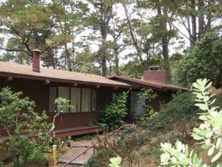 Carmel Retreat, Ocean Views, 30 DAY RENTAL - Carmel vacation rentals