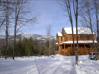 Beaver Dam Lodge - Wilmington vacation rentals