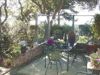 Carmel with Ocean Views, monthly rental - Carmel vacation rentals