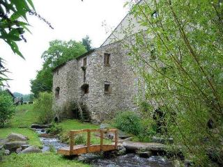 Moulin de Record Gîtes de pêche- Record Watermill Cottages - Brassac vacation rentals