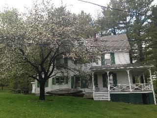 Victorian Lake Home in Catskill Region/ Bethelwood - Lake Huntington vacation rentals
