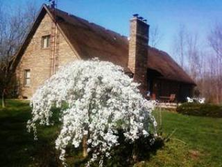 Spring at the Triple T Ranch - Triple T Ranch Bed & Breakfast - Findlay - rentals